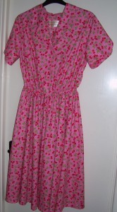 jubilee cherries dress 1