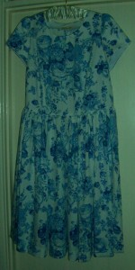 toile de jouy dress 01