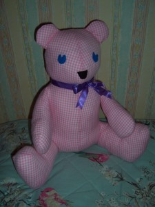 bear in pink gingham